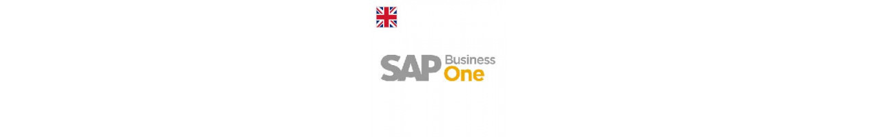 SAP Business One ENG